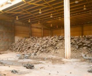 deposito abandonado lixo toxico amianto fernanda giannasi