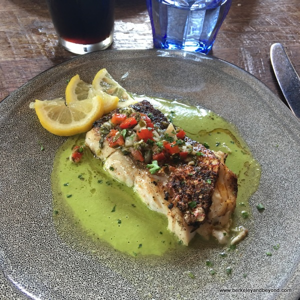 red snapper with salsa verde at Southerleigh Fine Food and Brewery in San Antoniio, Texas