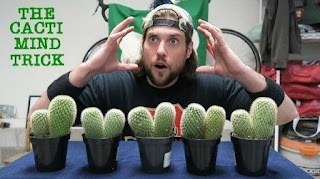 L.A Beast Net Worth