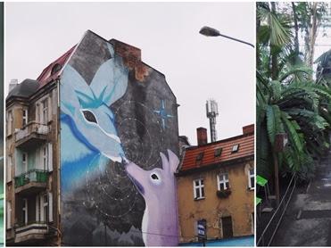 206. Wycieczka do Poznania: palmiarnia, stare ZOO, muzeum, mural 3D i ramen