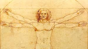 homme vitruve musculation anatomie