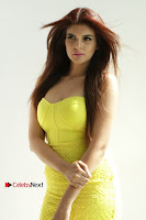 Actress Model Ihana Dhillon Poshoot Gallery in Yellow Lace Short Dress  0010.jpg