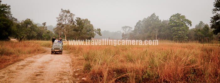 Early Morning Safari At Jim Corbett National Park India