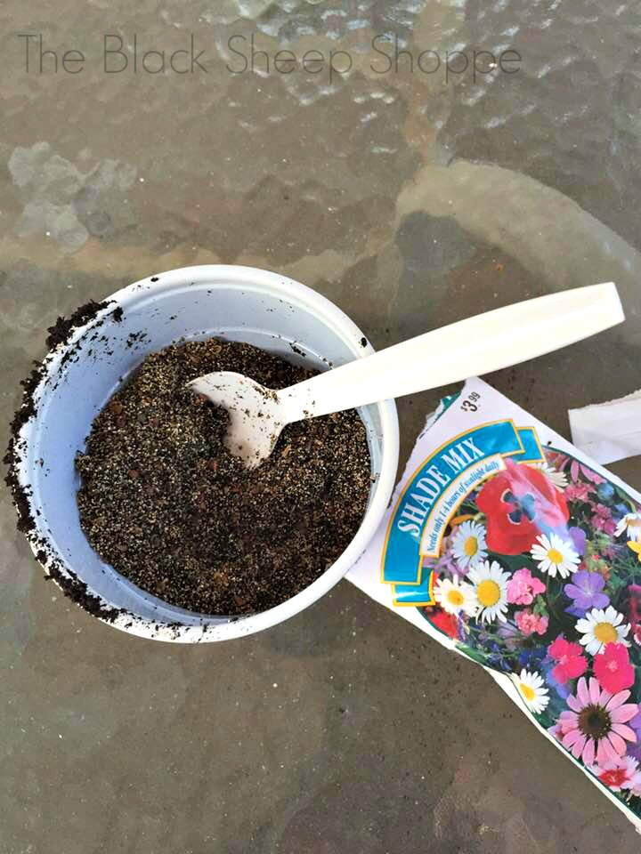 Mixing the gardening soil with the wildflower seeds.