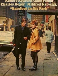 Barefoot in the Park | Bmovies