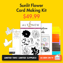 Altenew Limited Edition Stamping Kit