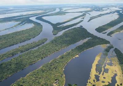 Mar do caribe inundou floresta Amazônica há milhões de anos