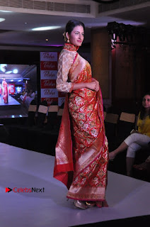 South Indian Celebrities Pos at Love For Handloom Collection Fashion Show  0026.jpg