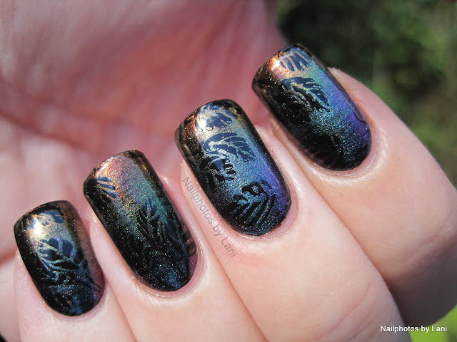 First darksome nail