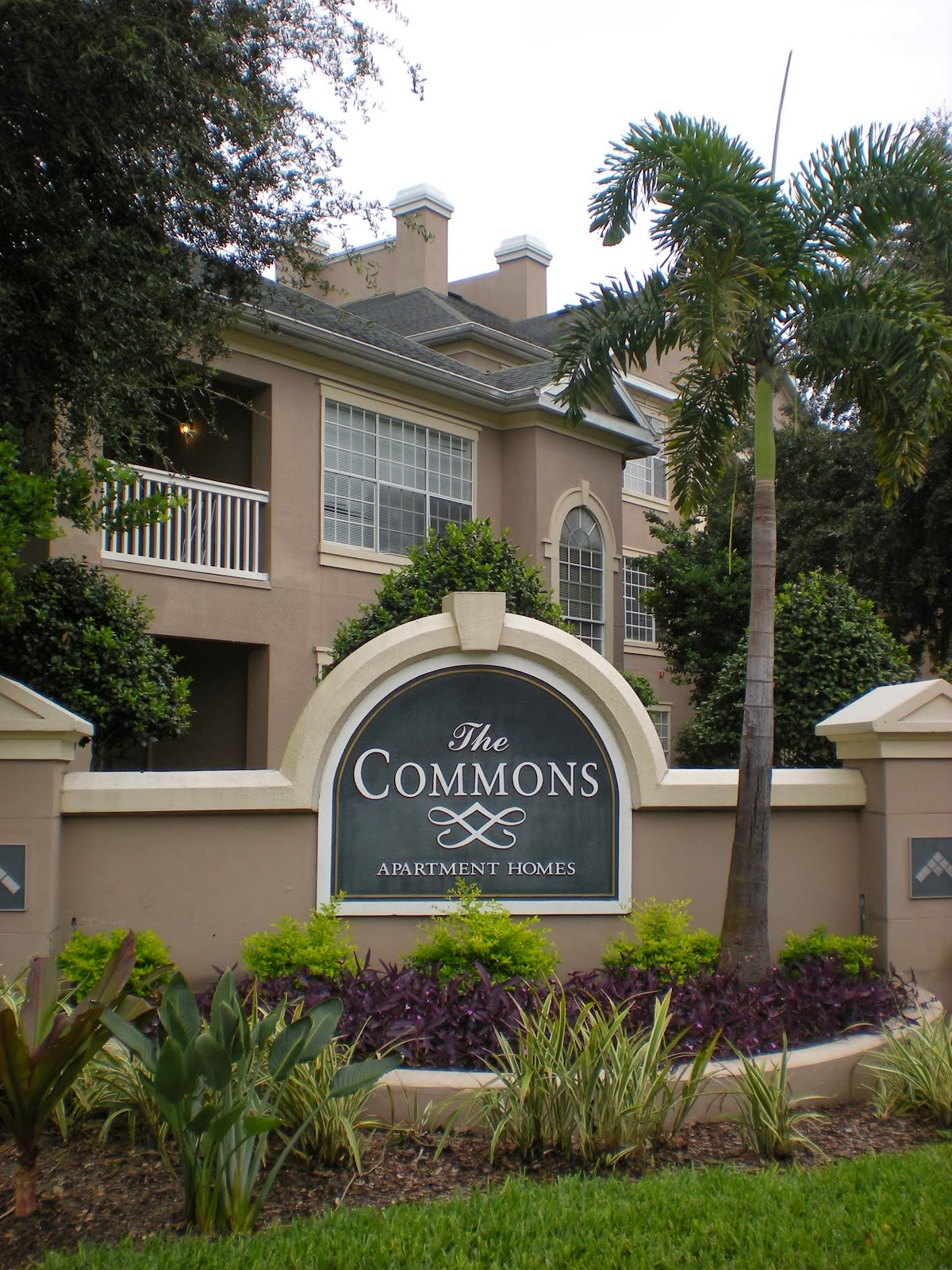 Please Note: The Commons Is For The NOW OPEN To All Disney College Program  Participants.
