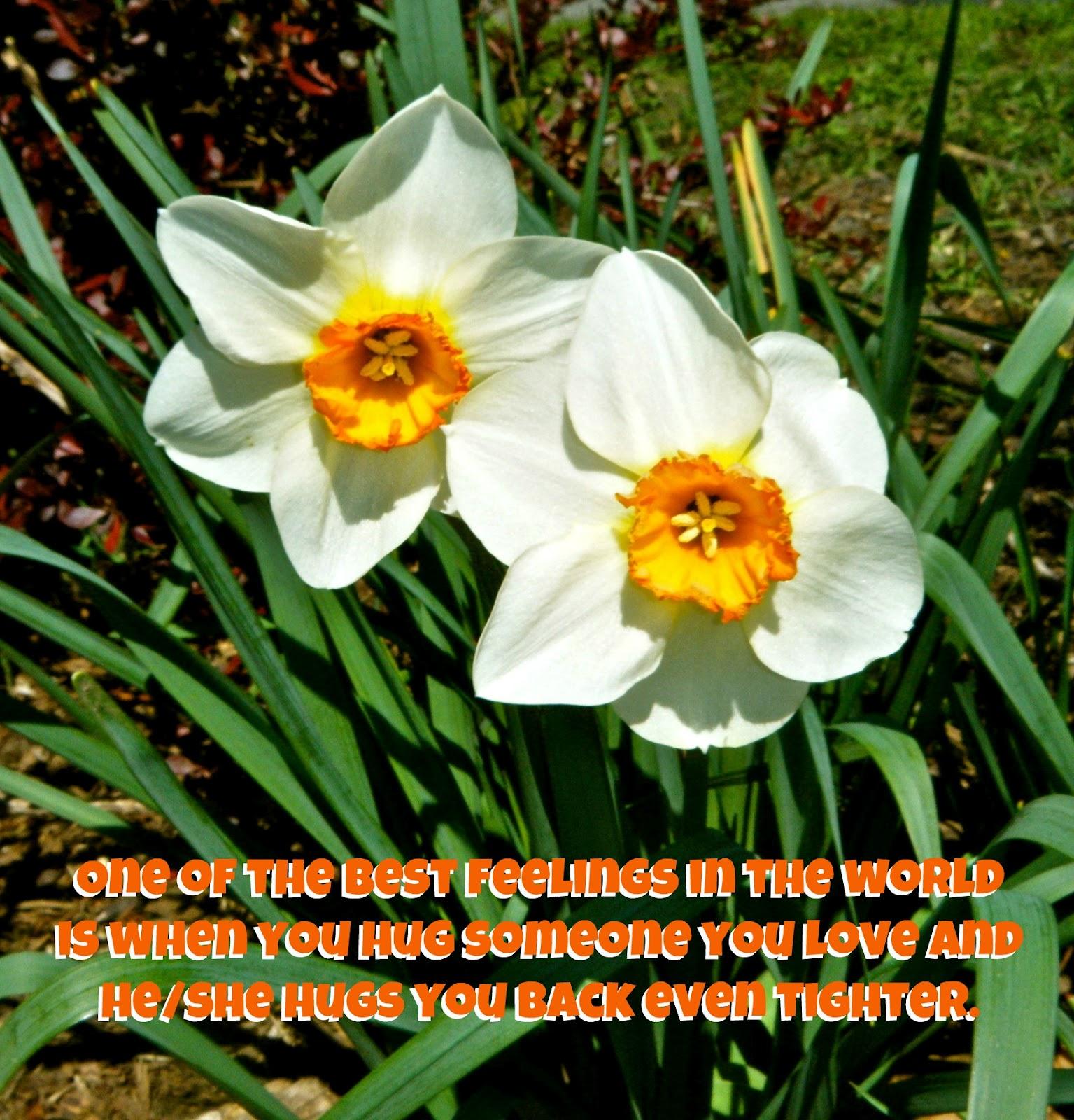 love faithfulness meet together