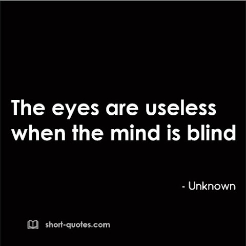 """""""The eyes are useless when the mind is blind."""" - Proverb"""