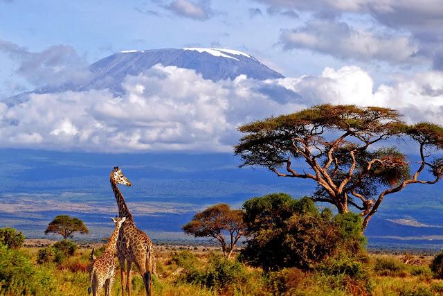 El monte Kilimanjaro en Tanzania