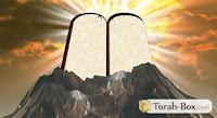L'œuvre De La Lumière S'inscrit et Se Manifeste, dés La Genèse, dans l'histoire Messianique : « Que la Lumière Soit ! Et La Lumière Fut (a) ».