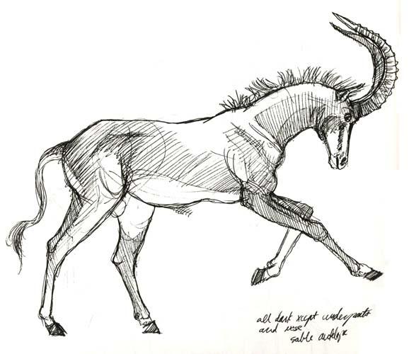 Art by Jeane Nevarez: January 2013
