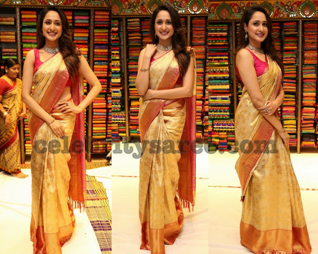Pragya Jaiswal in Golden Silk Saree
