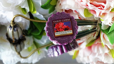 revue bougie black plum blossom yankee candle fleur de prunier