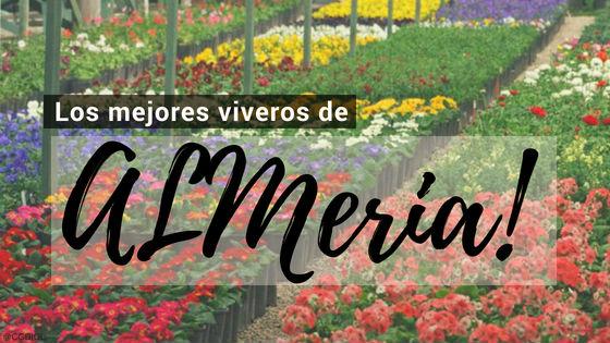 Listado de los Mejores Viveros de la Provincia de Almeria, España, donde puedes comprar plantas para tus proyectos