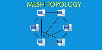 Mesh Topology Network