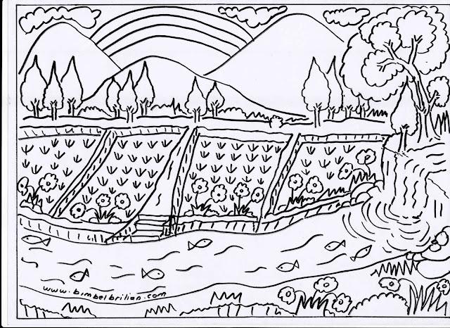 16. Gambar Sawah, Pegunungan, Pelangi dan Sungai Yang Banyak Ikannya.