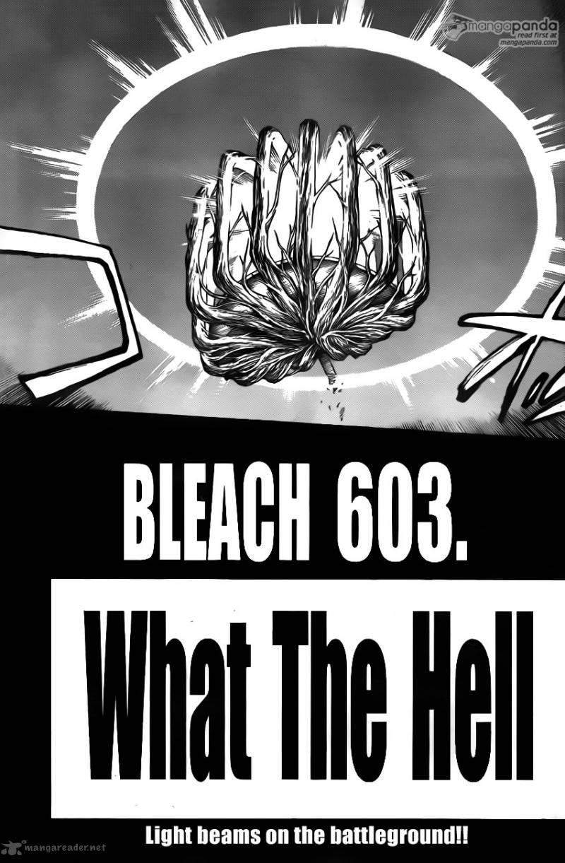 Bleach Ch 603: What The Hell