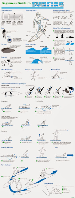 Beginner's guide to surfing infographic