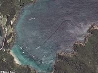 Makhluk Laut Raksasa Tertangkap Google Earth