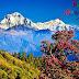 Happy New Year 2077 - Nepali New year