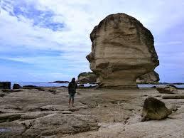 http://www.lomboksociety.web.id/2017/01/tour-pantai-selatan-lombok-diakhiri.html