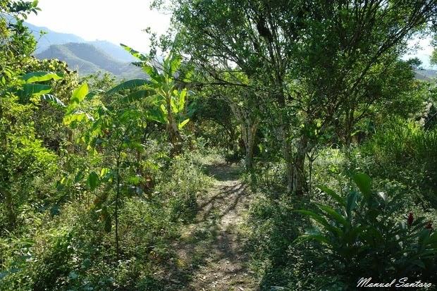 San Ramon, sentiero verso la Catarata La Encantada