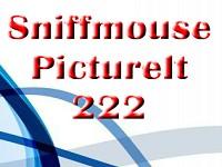 PictureIt 222
