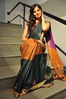 Supriya Shailaja  Saree Rushi Audio Launch (20).jpg