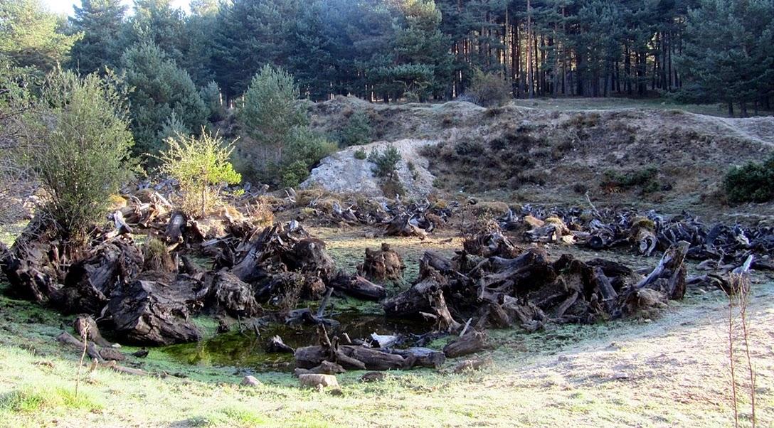 La Garganta del Río Moros abre sus puertas - Alfonsoyamigos