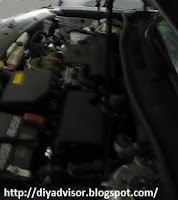 The engine hood is held up by two long thin black shocks