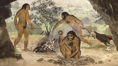 ilk insanlar, ilk et pişirme, pişmiş et sağlıklı mı
