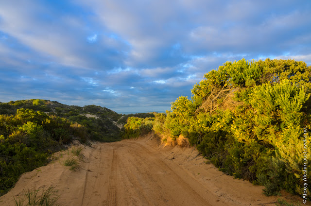 Dirt road to Stony Rise Beach