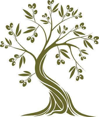 Zeytin Dalı Neden Barışın Sembolüdür?, Zeytin Dalı ve Güvercin, Nuh Tufanı ve Zeytin Dalı, Hz. Adem ve Zeytin Dalı,