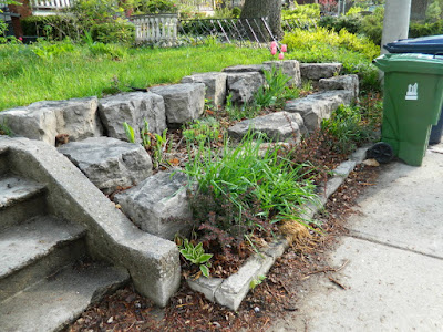 Toronto Riverdale Spring Cleanup Front Garden Before by Paul Jung Gardening Services--a Toronto Gardening Company