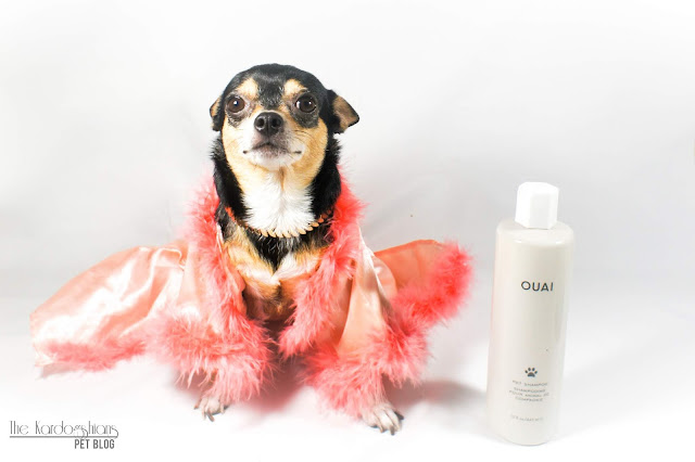 We Tried The Limited Edition OUIA Pet Shampoo (By Kardashian Hairstylist, Jen Atkins)