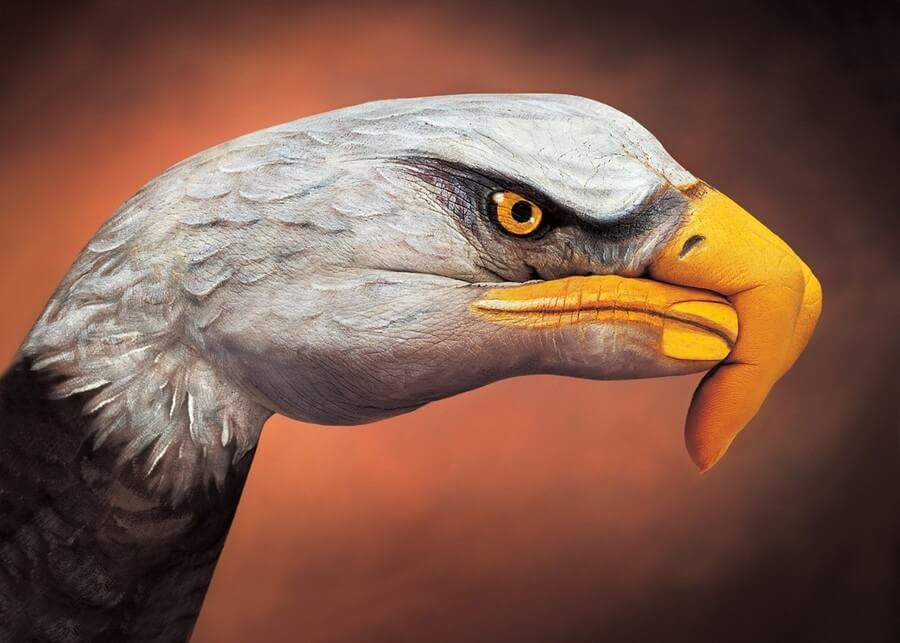 01-Bald-Eagle-Guido-Daniele-Body-Painting-www-designstack-co