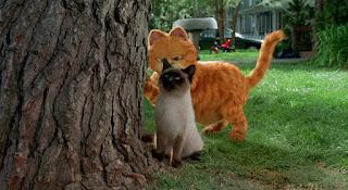 Chú Mèo Siêu Quậy