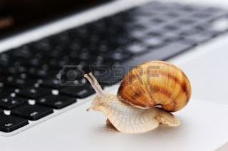 snail's pace advises the author about reading