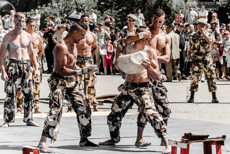 موسوعة الصور الرائعة للقوات الخاصة الجزائرية - صفحة 62 IMG_5578