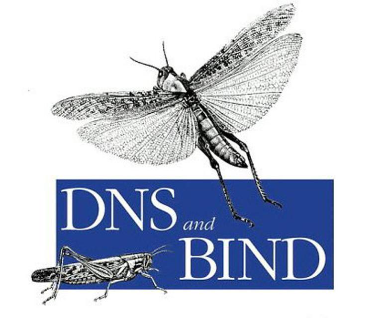 mandailingnatal - Mengenal Lebih Dalam Configurasi BIND9