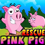 Games4King Cute Pink Pig …