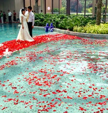 pool full of flower petals