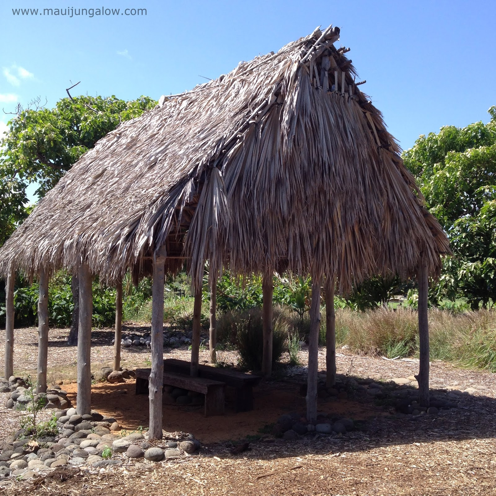 Thatched Hut At Maui Nui Botanical Gardens.