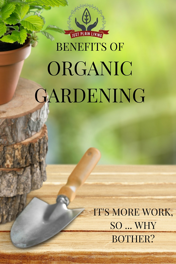 There are some solid reasons why you should be switching your garden to organic, non-chemical methods.