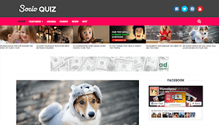 Socio Viral Buzz Blogger Template