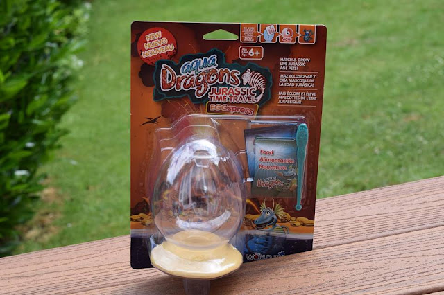 Aqua Dragons Jurassic Time Travel Eggspress